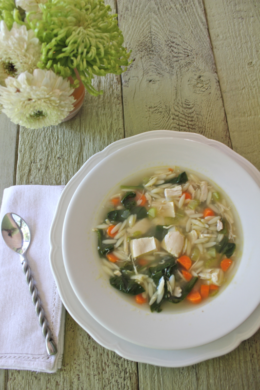 Chicken and Orzo Soup 2V