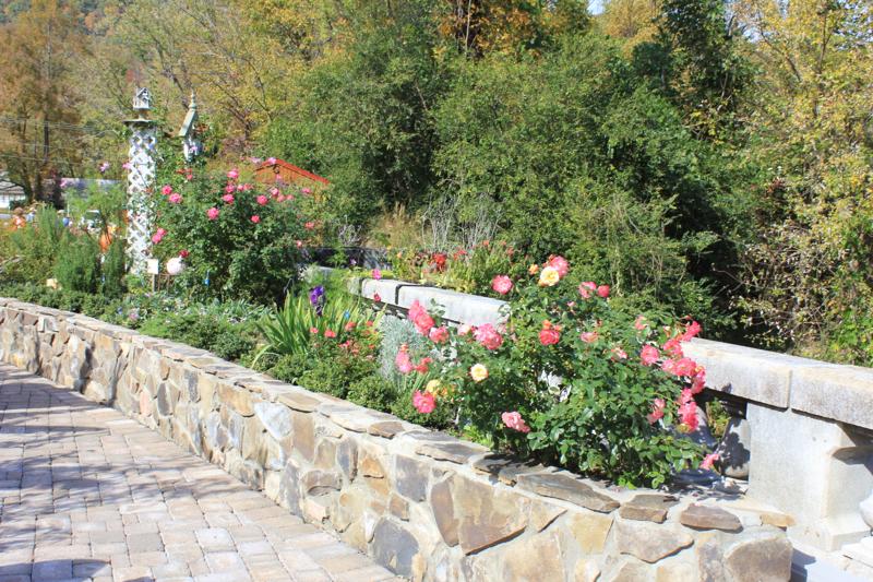 Flowering Bridge Beauty