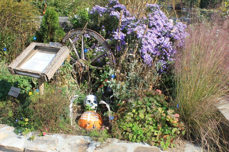 Flowering Bridge Halloween 1