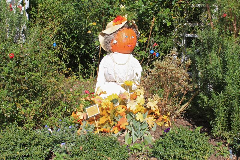 Pumpkins 5 Lady